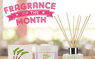 Gourmand Fragrance: Rhubarb and Ginger
