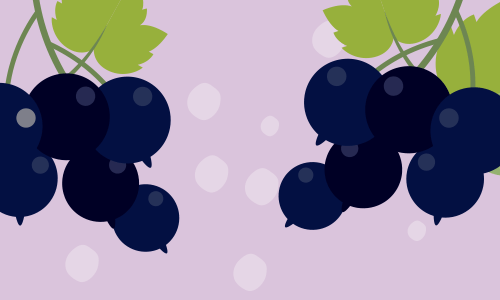 Blueberry & Blackcurrant